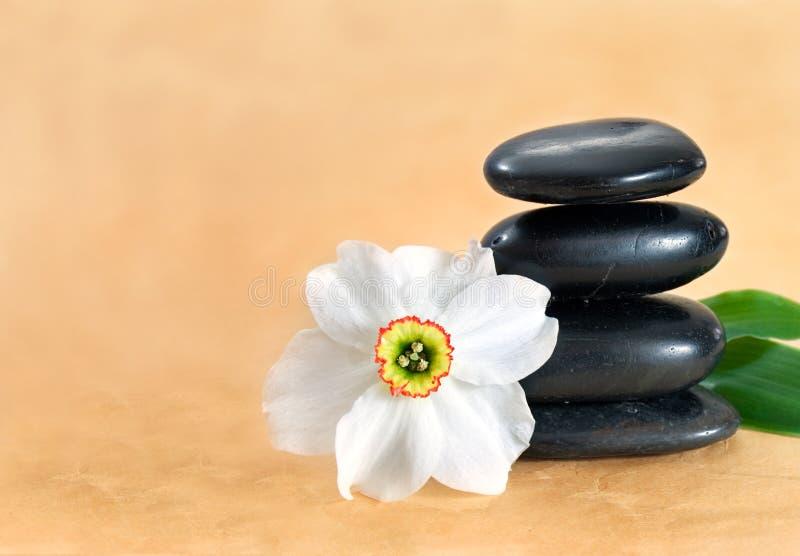 Torretta e fiore di pietra fotografia stock libera da diritti