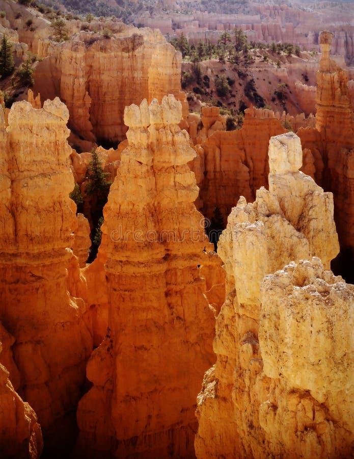 Torrette ad alba, Utah della sosta nazionale del canyon di Bryce fotografie stock libere da diritti