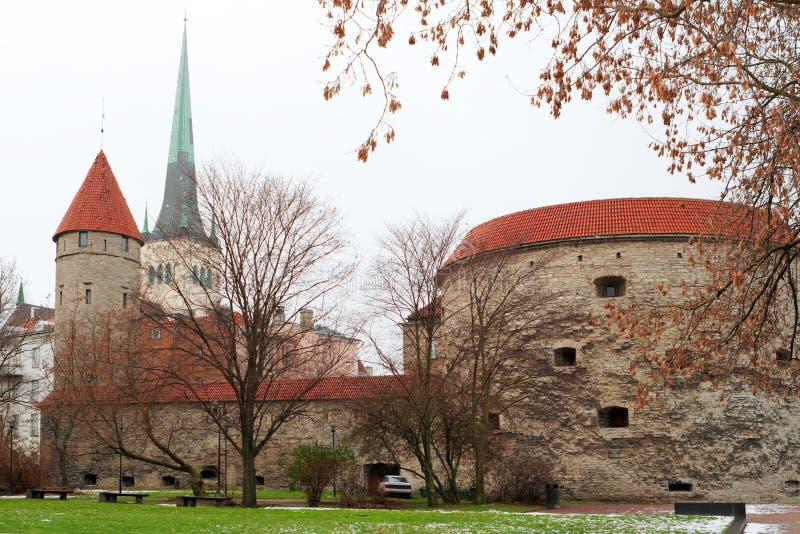 Torrette di Tallinn. L'Estonia immagine stock