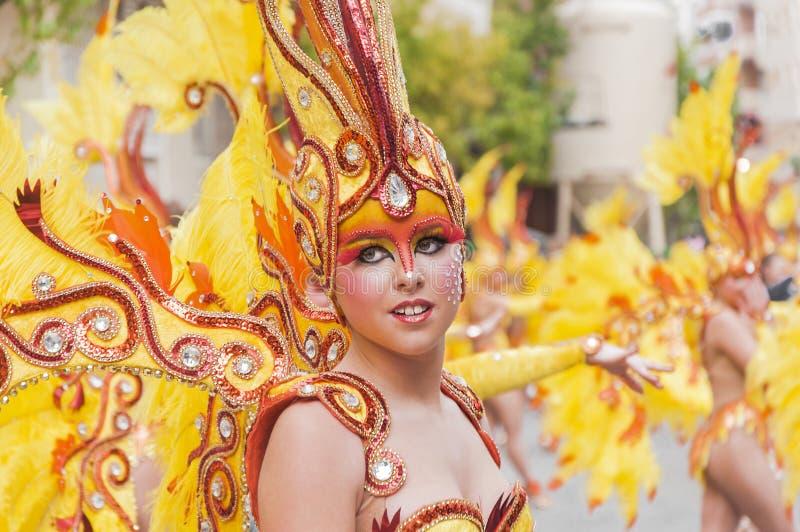 TORREVIEJA, ΣΤΙΣ 19 ΦΕΒΡΟΥΑΡΊΟΥ: Ομάδες καρναβαλιού και ντυμένοι με κοστούμι χαρακτήρες στοκ φωτογραφία με δικαίωμα ελεύθερης χρήσης