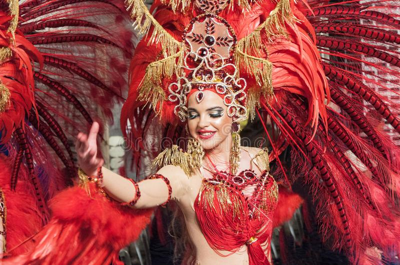 TORREVIEJA, SPAIN, FEBRUARY 11,2018: Carnival groups and costum stock photography