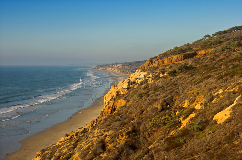 Torrey PInes stock photos