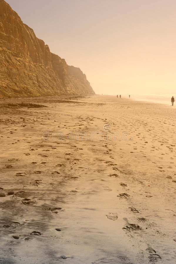 Torrey Pines Beach stock image