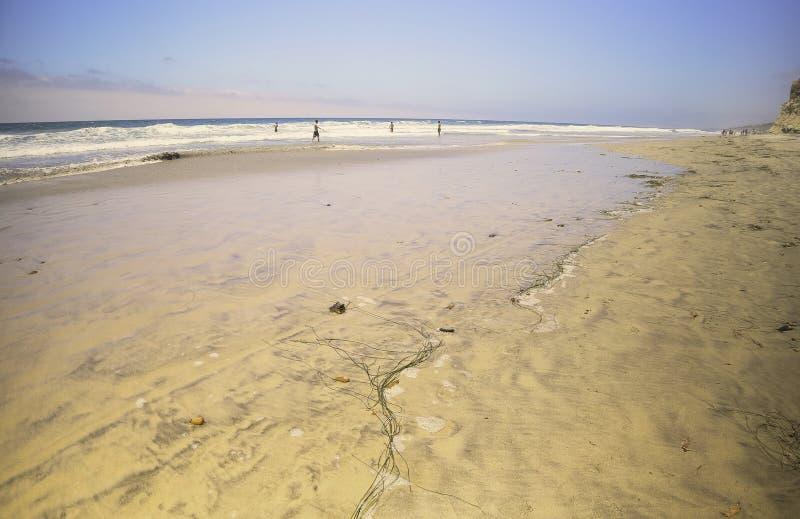 Torrey Pines State Park Beach, California royalty free stock photos