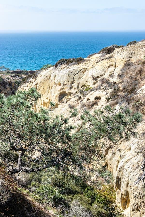 Torrey Pines State Reserve et plage à San Diego, la Californie photos stock