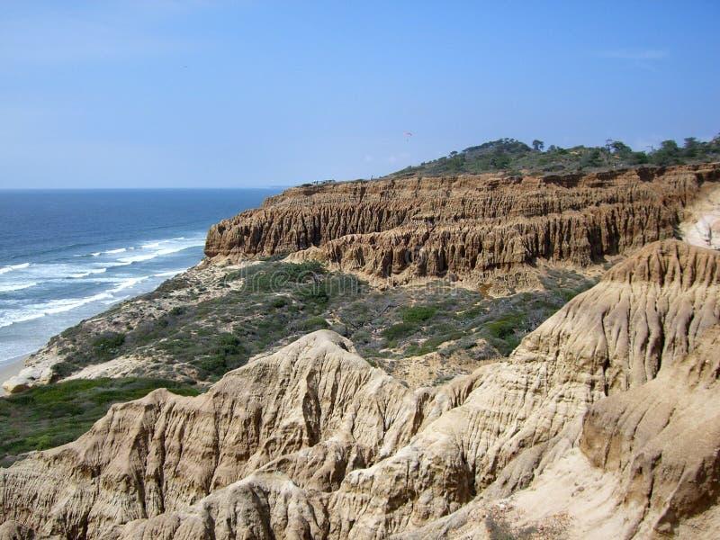 torrey rezerwowy sosen krajobrazowych obraz stock