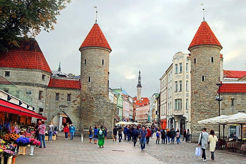 Torri del portone di Viru all'entrata alla vecchia città nella sera, Tallinn immagini stock