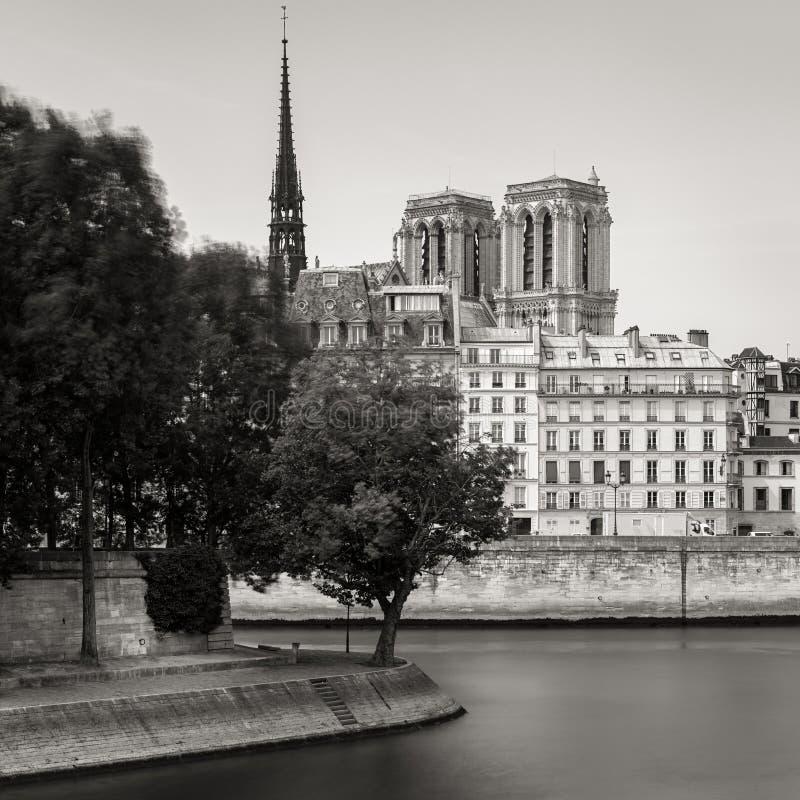Torri di Notre Dame de Paris Cathedral e banca della Senna fotografie stock
