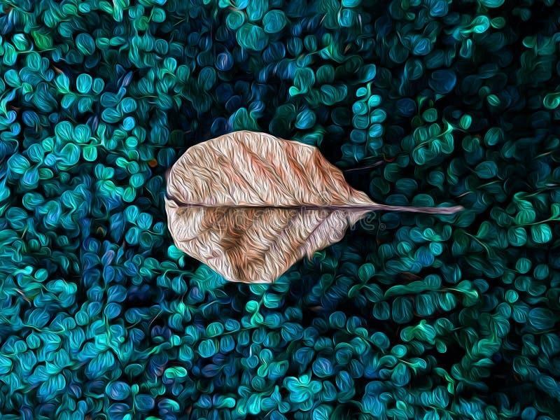 Torrt blad på grön bakgrund för diagram för färg för gräsmattaillustrationvatten royaltyfria bilder