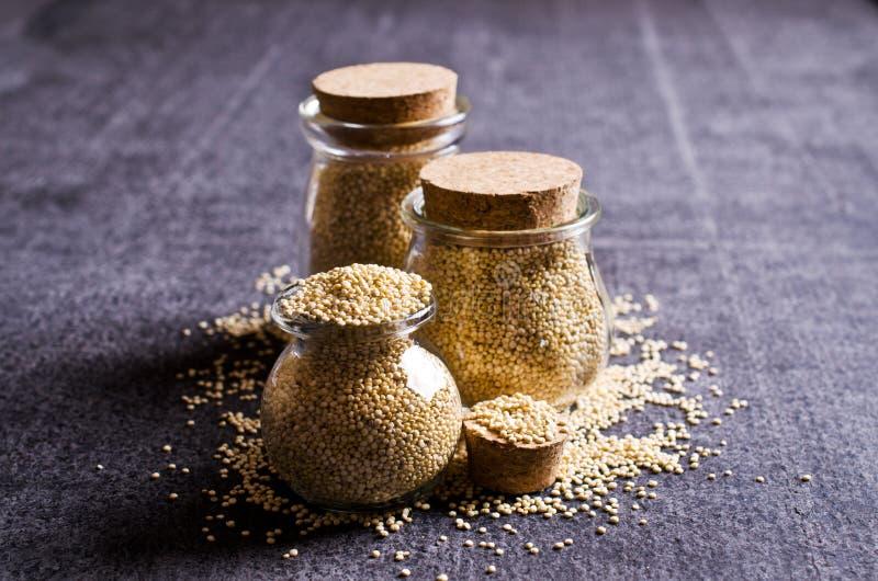 Torrt frö för Quinoa royaltyfri fotografi