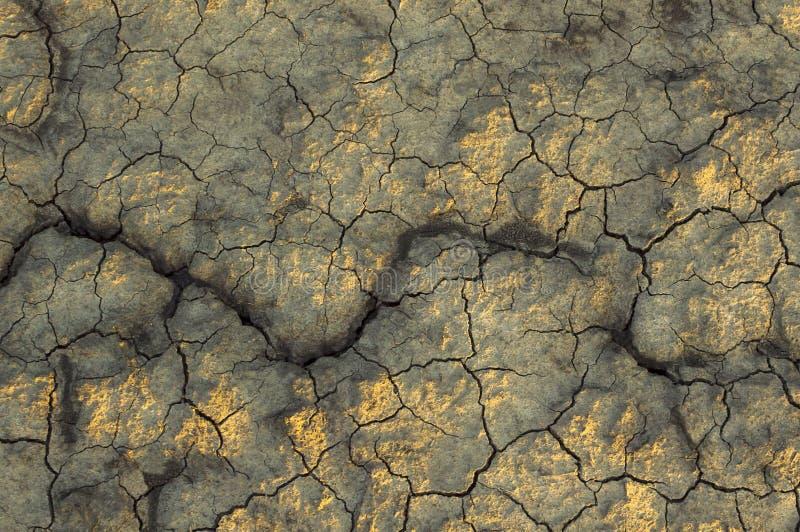 Torrt smutsa textur på jordningen royaltyfri bild