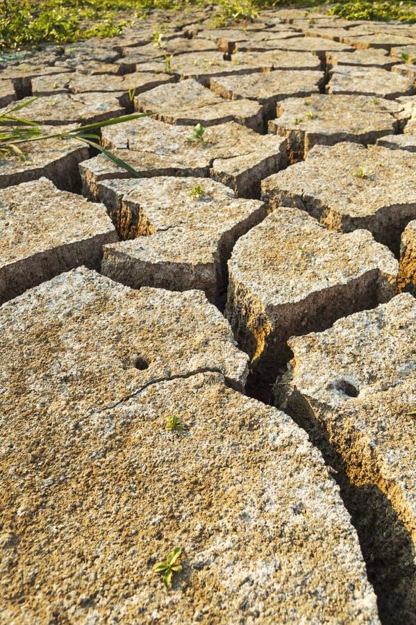 Torrt smutsa textur på jordningen royaltyfria bilder
