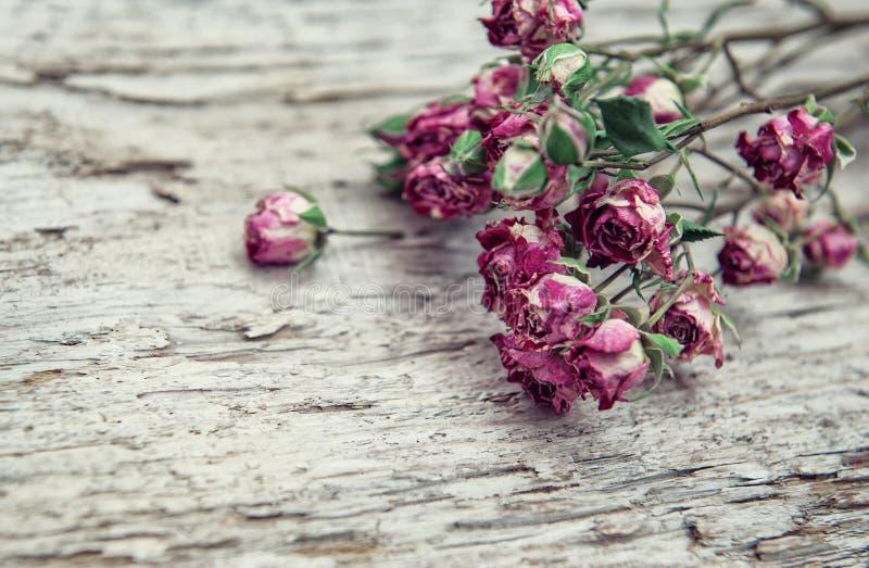 Torrt steg blommaramen på gammal träbakgrund fotografering för bildbyråer