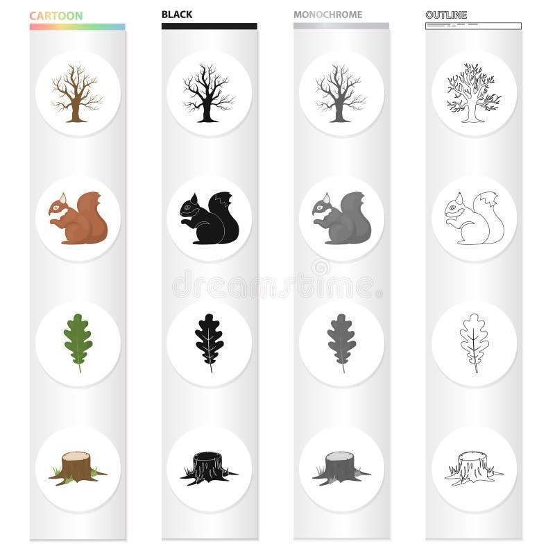 Torrt träd i skogen, ekorre, ekblad, stubbe Utformar fastställda samlingssymboler för skog i monokrom översikt för tecknad filmsv vektor illustrationer
