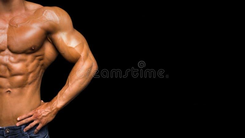 Torse de plan rapproché de la pose musculaire sans chemise d'homme image stock