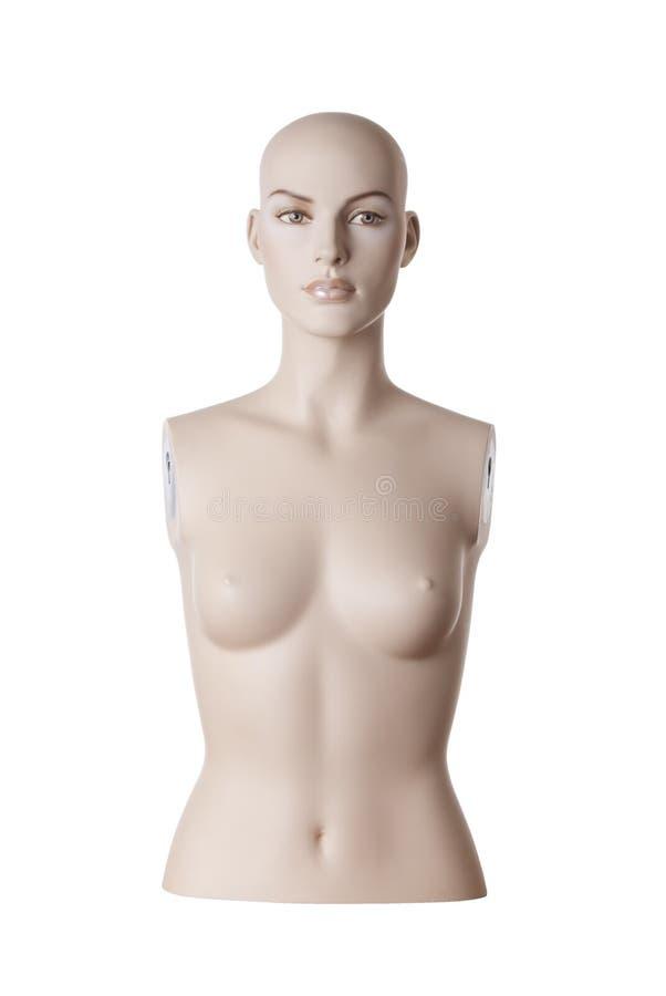 Torse femelle de mannequin | Studio d'isolement photo stock