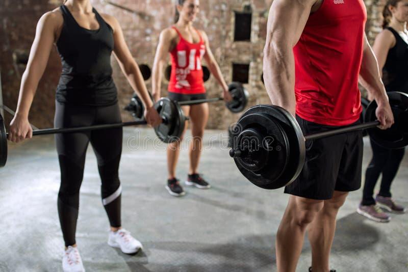 Torse musculaire de séance d'entraînement de bodybuilders photographie stock libre de droits
