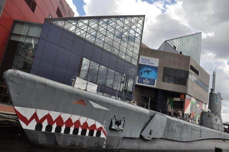 Torsk di USS ed acquario nazionale a Baltimora fotografia stock libera da diritti
