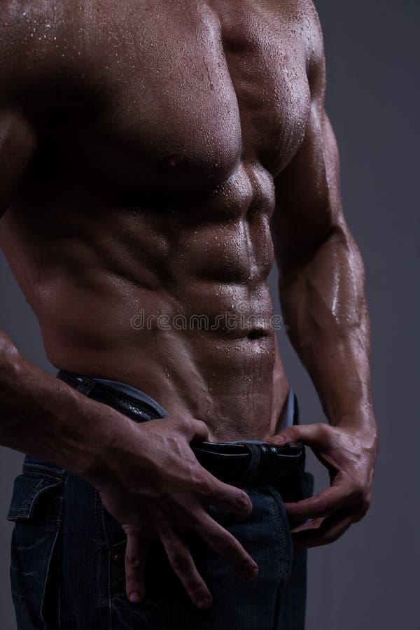 Torso atlético forte do homem imagens de stock