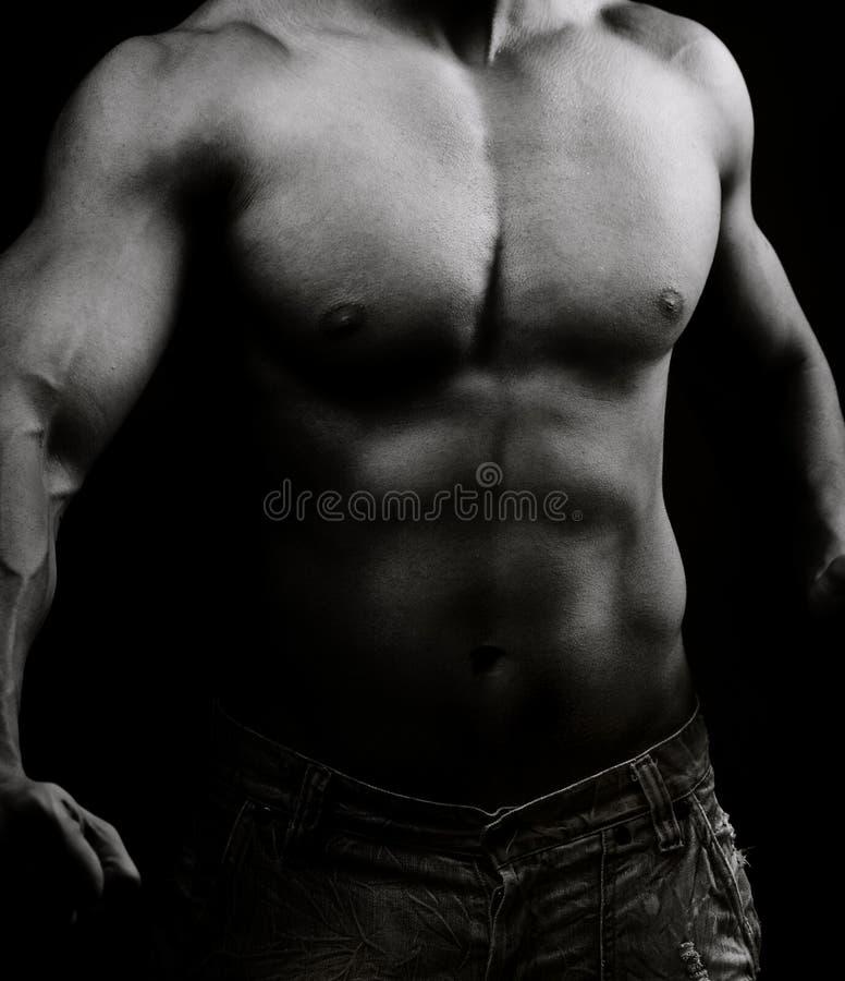 Torso del hombre descamisado muscular en la obscuridad fotos de archivo libres de regalías