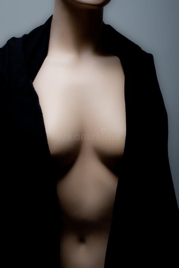 Torso desnudo fotos de archivo libres de regalías