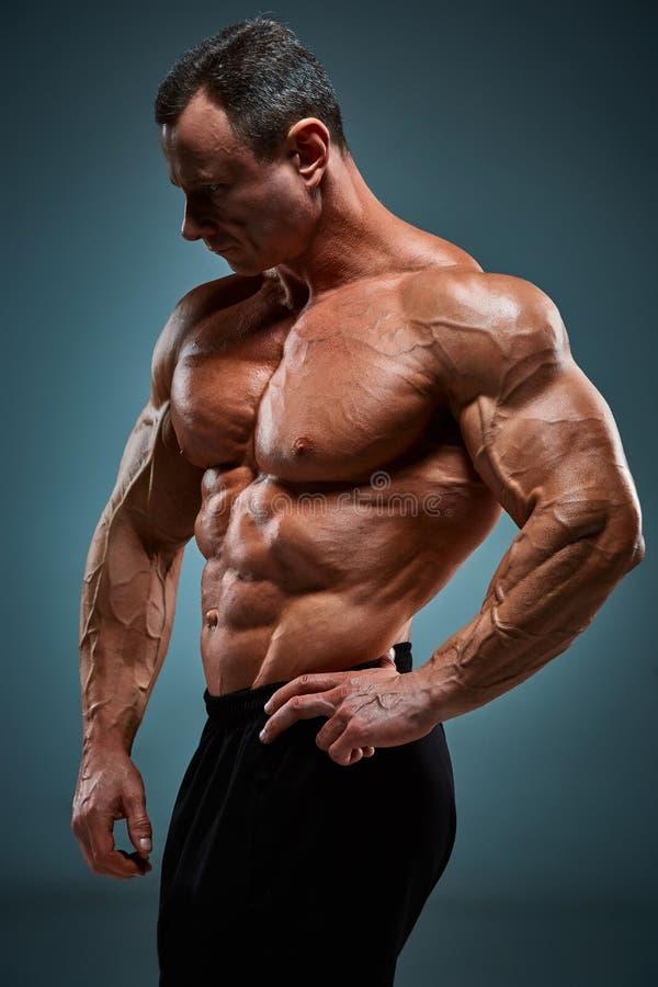 Torso do construtor de corpo masculino atrativo no fundo cinzento foto de stock royalty free