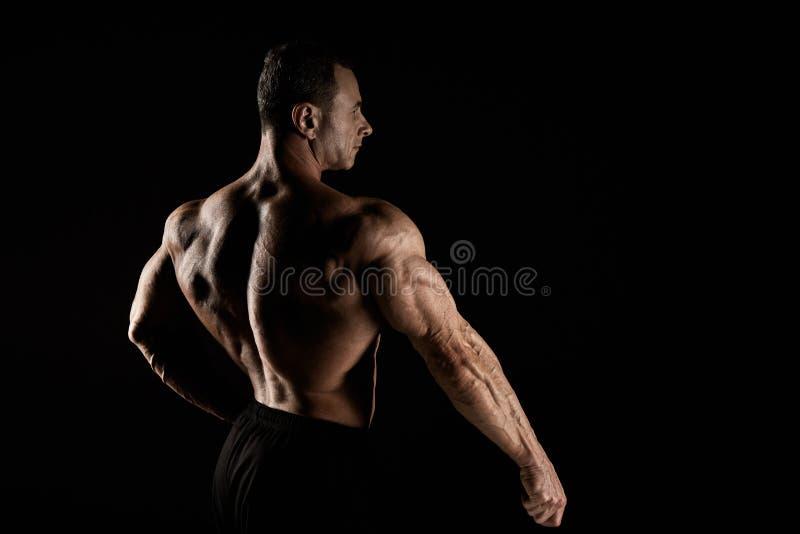 Torso do construtor de corpo masculino atrativo no fundo preto imagem de stock royalty free
