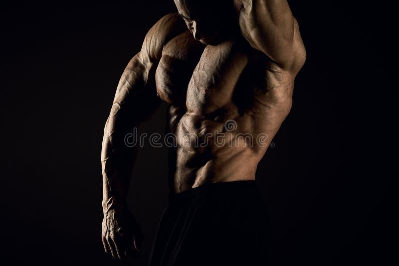 Torso do construtor de corpo masculino atrativo no fundo preto fotos de stock