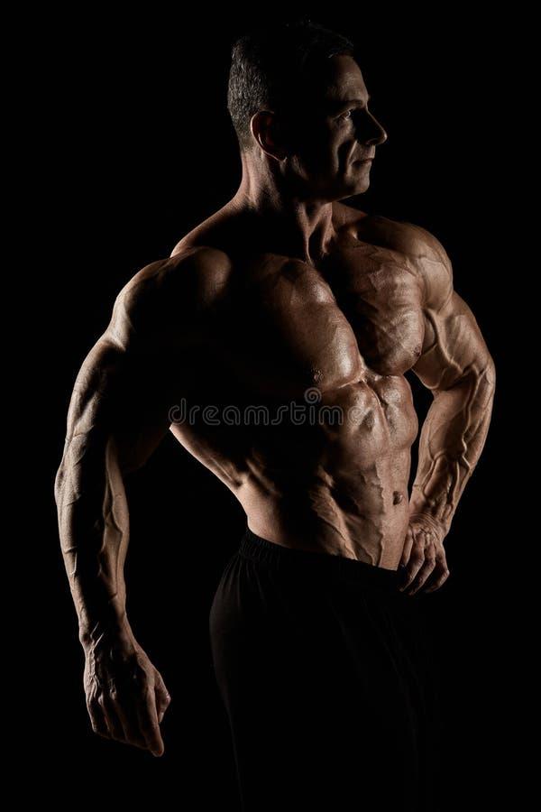 Torso do construtor de corpo masculino atrativo no fundo preto fotografia de stock