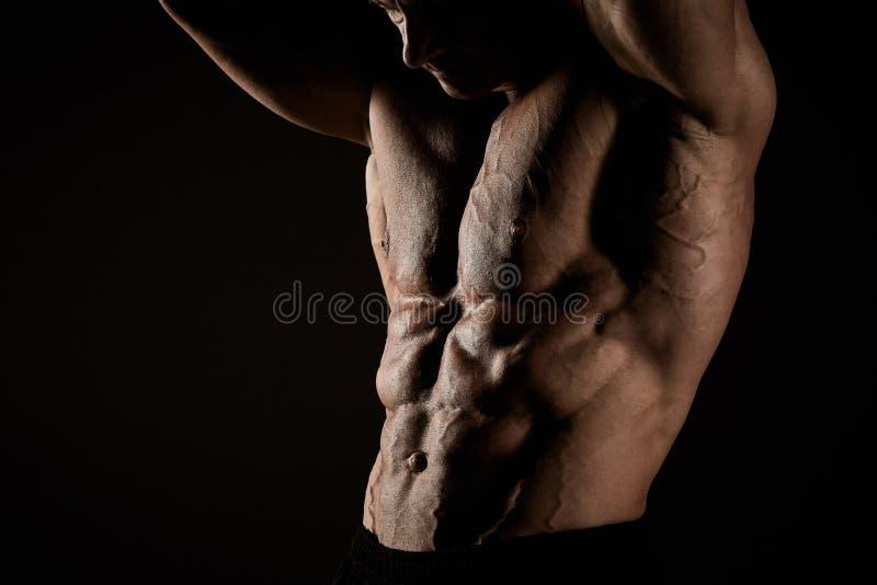 Torso do construtor de corpo masculino atrativo no fundo preto fotografia de stock royalty free