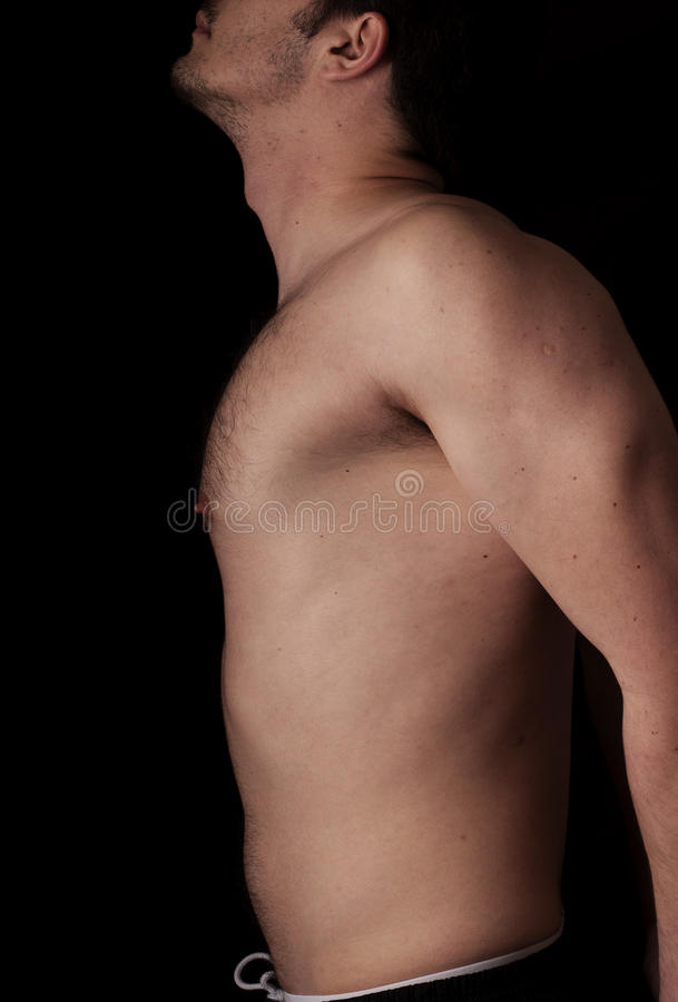 Torso royalty free stock photography