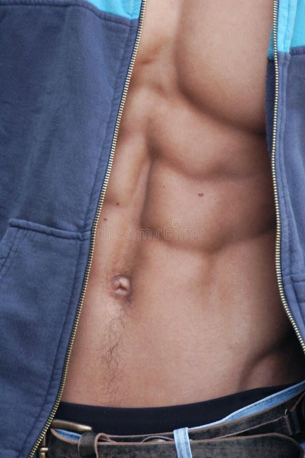 Torso maschio muscolare fotografie stock