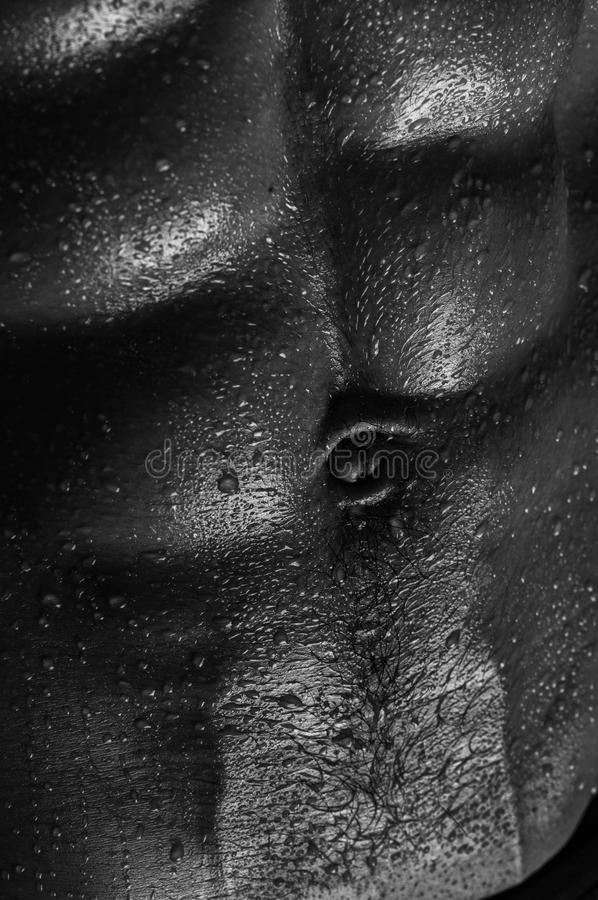 Torso maschio fotografie stock libere da diritti