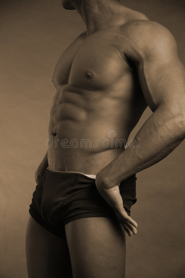 Torso masculino foto de stock royalty free