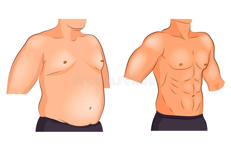 Torso masculino antes y después de la pérdida y de deportes de peso libre illustration
