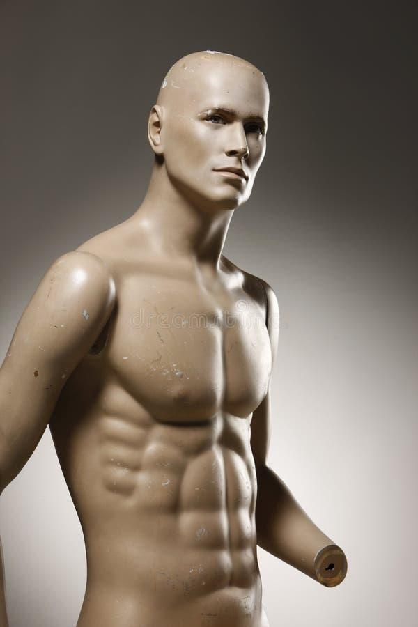 Torso masculino do mannequin fotografia de stock