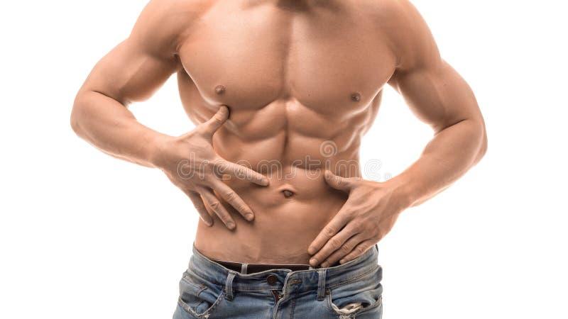 Torso masculino muscular aislado en blanco Hombre descamisado en los jaens azules que tocan sus ABS imagen de archivo