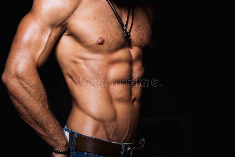 Torso muscular e 'sexy' do homem novo imagem de stock