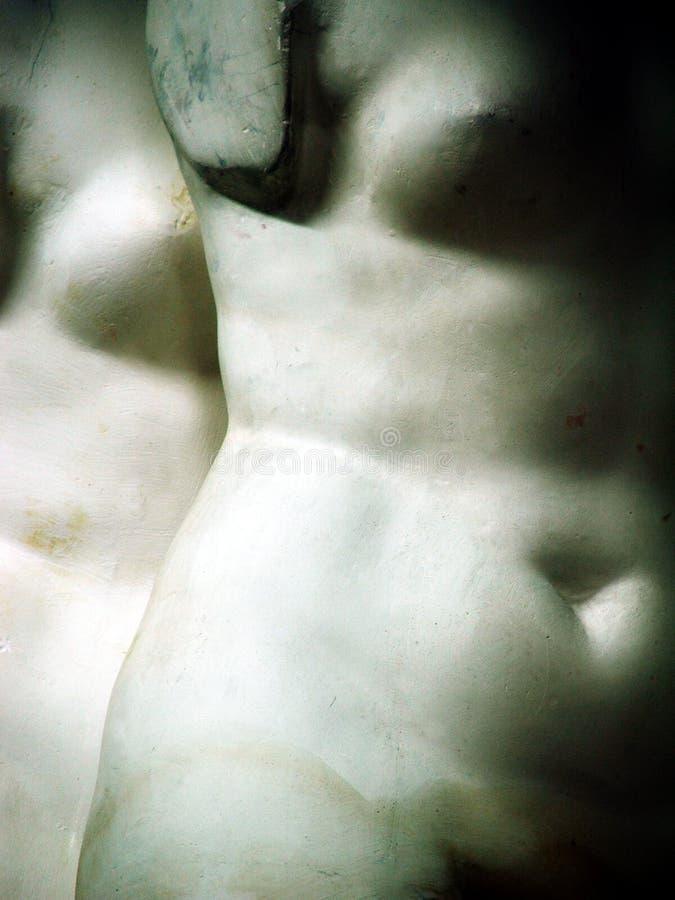 Download Torso03 fotografia stock. Immagine di nude, arte, statua - 208808