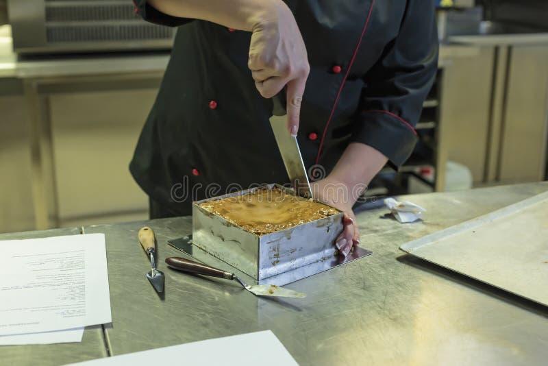 Tort, jabłczany kulebiak, pieczenie, baklava, bośniacki jedzenie, tort, chips, deser, łatwy deser, płatkowaty ciasto, bliskowscho obraz royalty free