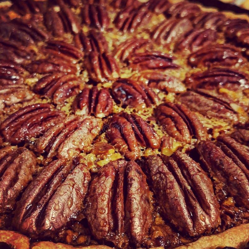 Torta da noz-pecã e do kumquat fotografia de stock
