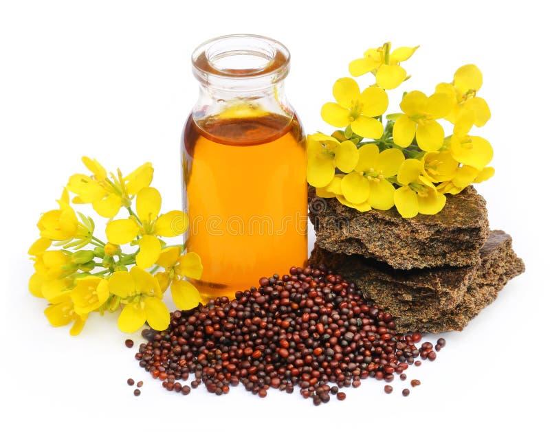 Torta de aceite de mostaza con la flor imágenes de archivo libres de regalías
