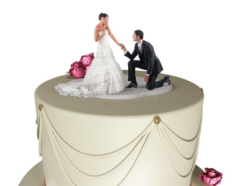 Torta de boda divertida foto de archivo libre de regalías