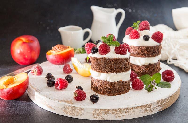 Torta de chocolate adornada con la frambuesa, grosella negra, nectarin foto de archivo libre de regalías