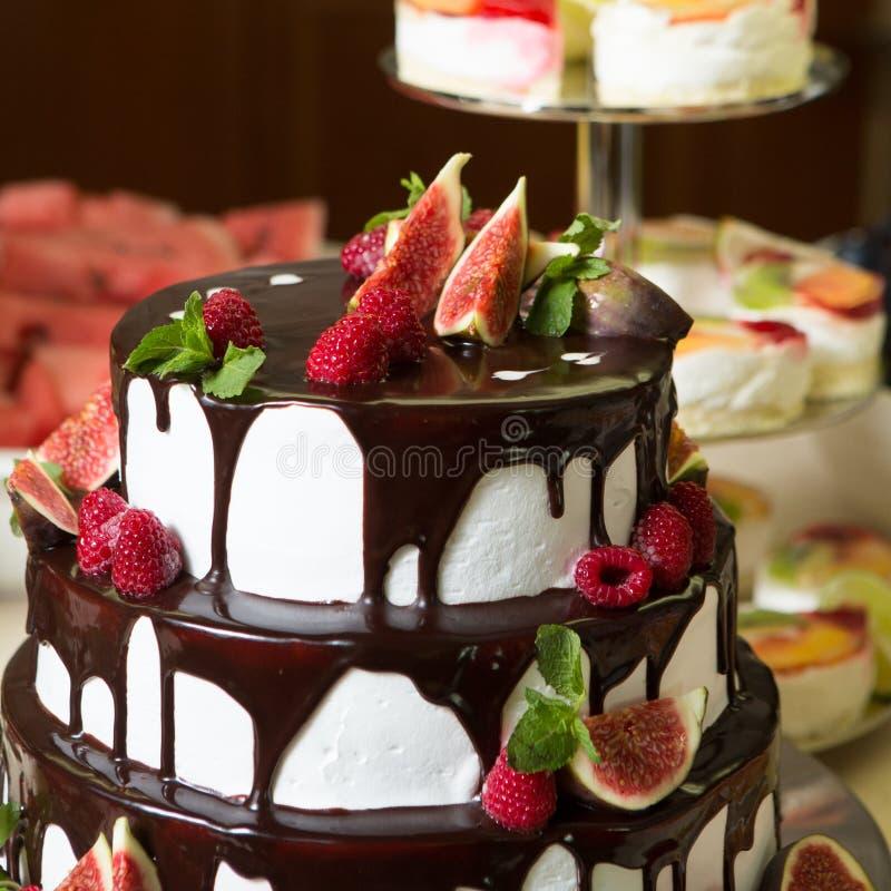 Download Torta De Chocolate Con Los Higos Y Las Frambuesas Imagen de archivo - Imagen de placa, cacao: 44854341
