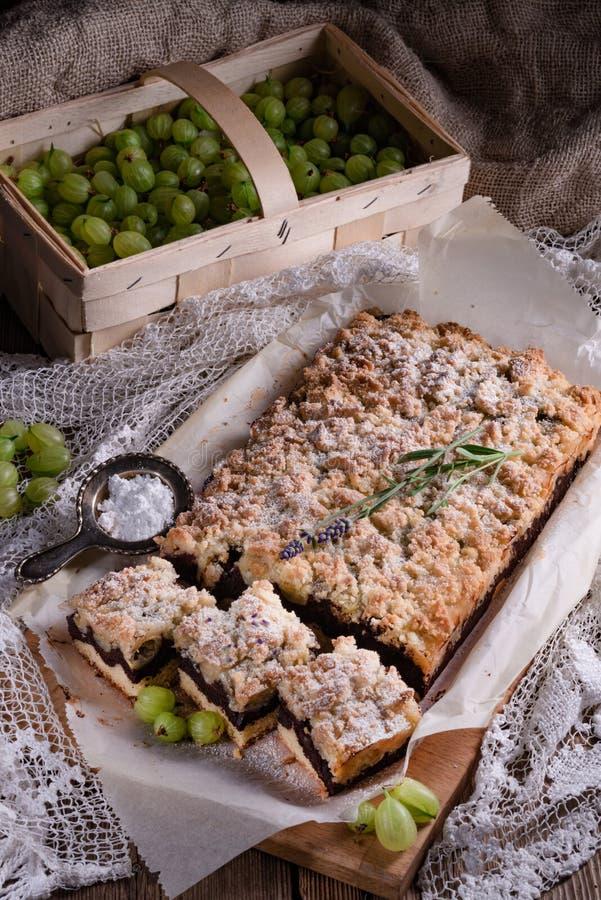 Torta de chocolate de las grosellas espinosas fotografía de archivo libre de regalías