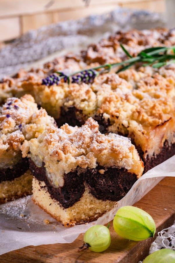 Torta de chocolate de las grosellas espinosas fotos de archivo libres de regalías