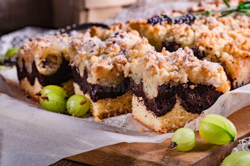 Torta de chocolate de las grosellas espinosas imagen de archivo libre de regalías
