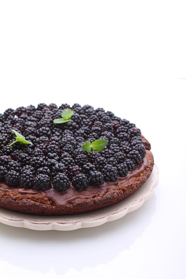 Torta de chocolate hecha en casa con las nueces y la zarzamora imagen de archivo