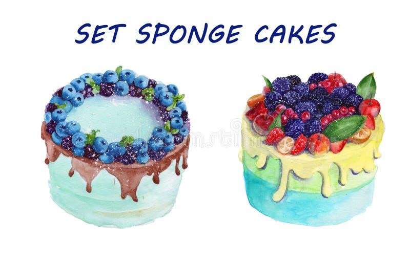Torta de esponja con la fruta watercolor ilustración del vector